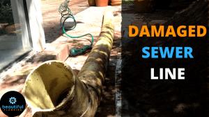 DAMAGED SEWER LINE
